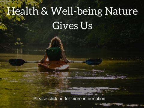 Our Heath and Well-being. Our body is the temple to the soul
